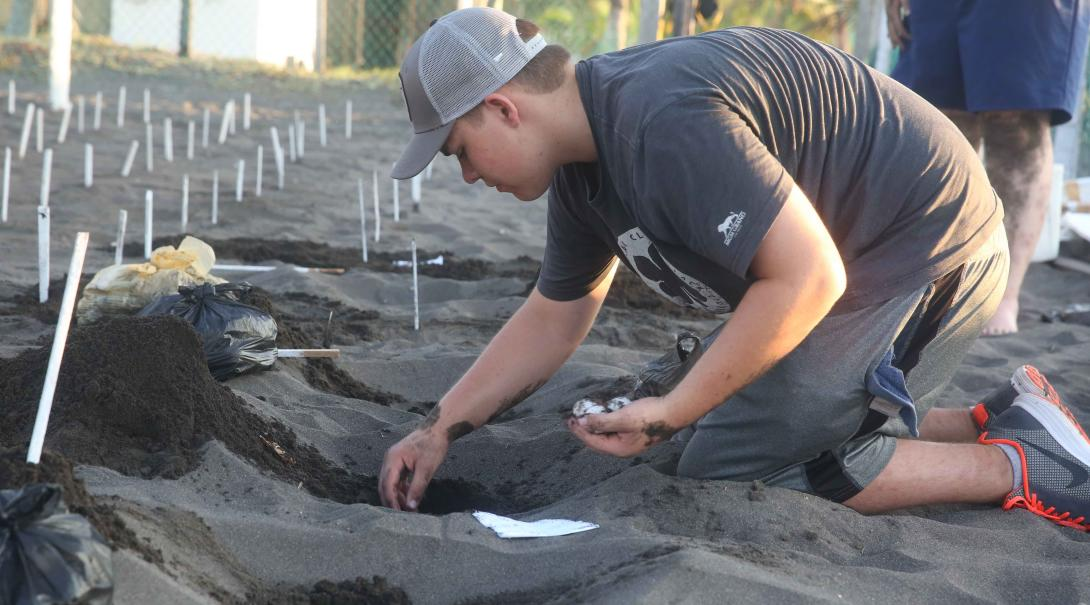 Voluntario de Conservación limpiando nidos de tortugas en México.